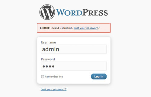 can not login to wordpress